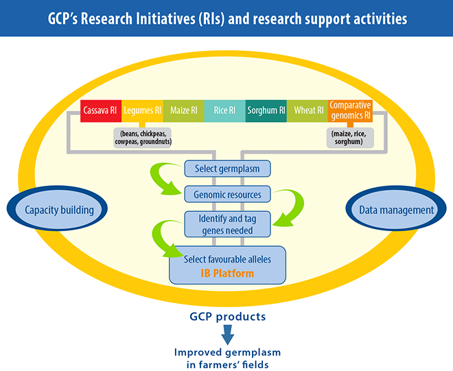GCP Research organisation