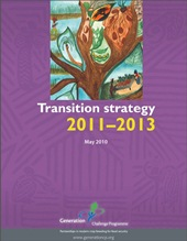 Transition-strategy-web