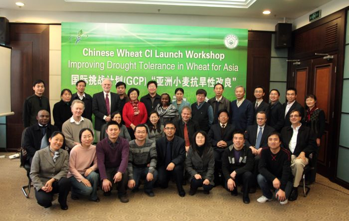 Participants at the China Wheat RI launch meeting